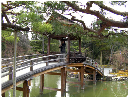 Offering a Healing Music Memorial Meditation at Eihoji Zen Temple in Japan two weeks after the tsunami disaster